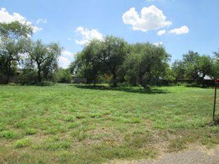201 Mesquite Meadow Street, La Joya TX