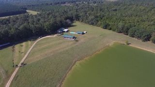 8291 County Road 189, Marion Junction, AL