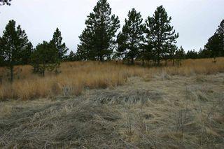 Tbd Mount Lion Lane #Lot 25, Custer SD