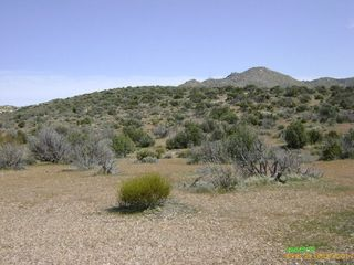 42 86 Acres Carrizo Gorge & Hwy #8, Jacumba, CA