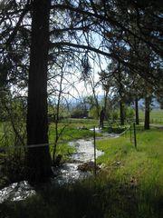 Unk S Gold Creek Loop, Hamilton MT