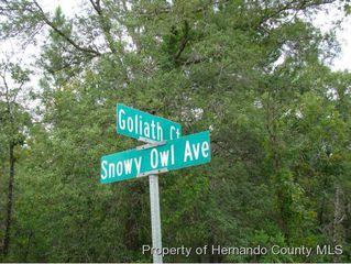 LOT35 Goliath Court, Brooksville FL