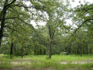 222 Forest Lane Dr, Mabank, TX