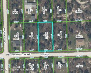 13135 Meadow Swallow Avenue, Weeki Wachee FL