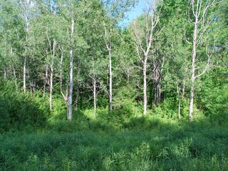 ON On Glacier Ridge Rd #Lot 21, Crandon, WI
