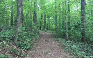 Vineyard Way #Lot 2, Jasper GA