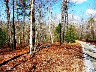 90-91 Robert Miller Lane, Mineral Bluff GA