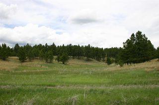 Tbd Mount Lion Lane #Lot 24, Custer SD