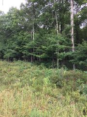 Deep Lake Rd #Lot 36, Long Pond, PA