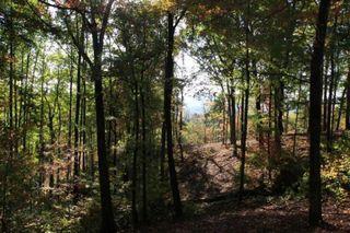 Summit Trails Drive #Lot 133, Sevierville TN
