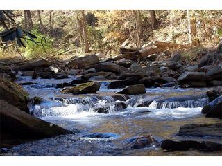 Reedy Patch Creek Drive 3A #Lot 3A, Bat Cave, NC
