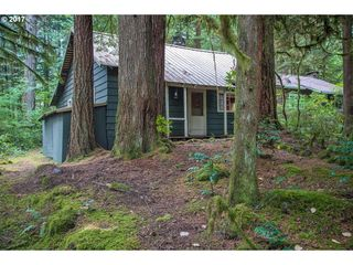 27254 E Marion Rd, Rhododendron, OR