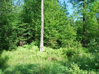 ON On Glacier Ridge Rd #Lot 12, Crandon, WI