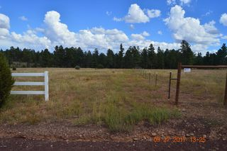 1927 Ricochet Ranch Rd, Clay Springs, AZ