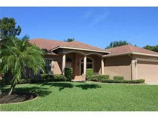 21141 Marsh Hawk Dr, Land O Lakes, FL