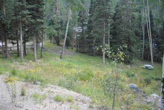 14 Pattison Loop, Taos Ski Valley, NM