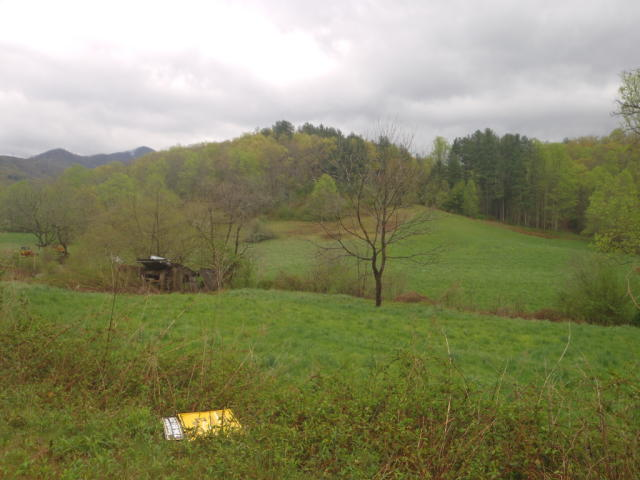 Tract 4 Thumping Creek Rd , Hayesville NC
