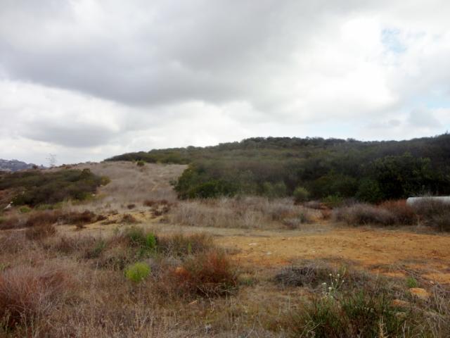 Wild Willow Hollow Rd 15 , Escondido CA