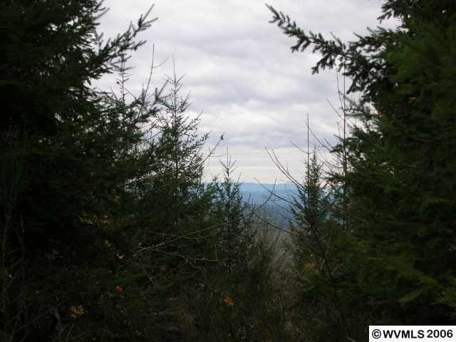43389 Rodgers Mountain Loop , Scio OR