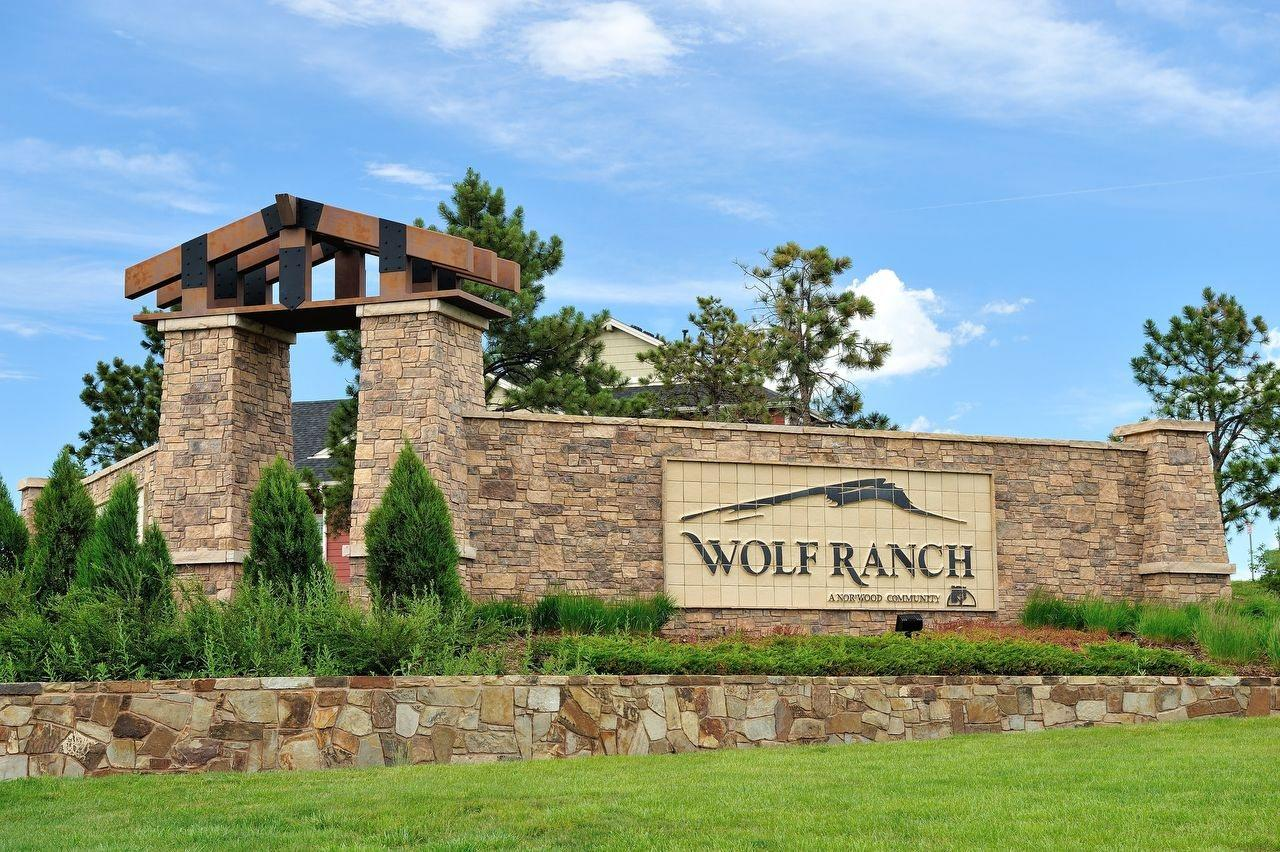 Wolf Ranch Paired Patio By Classic Homes New Homes For Sale