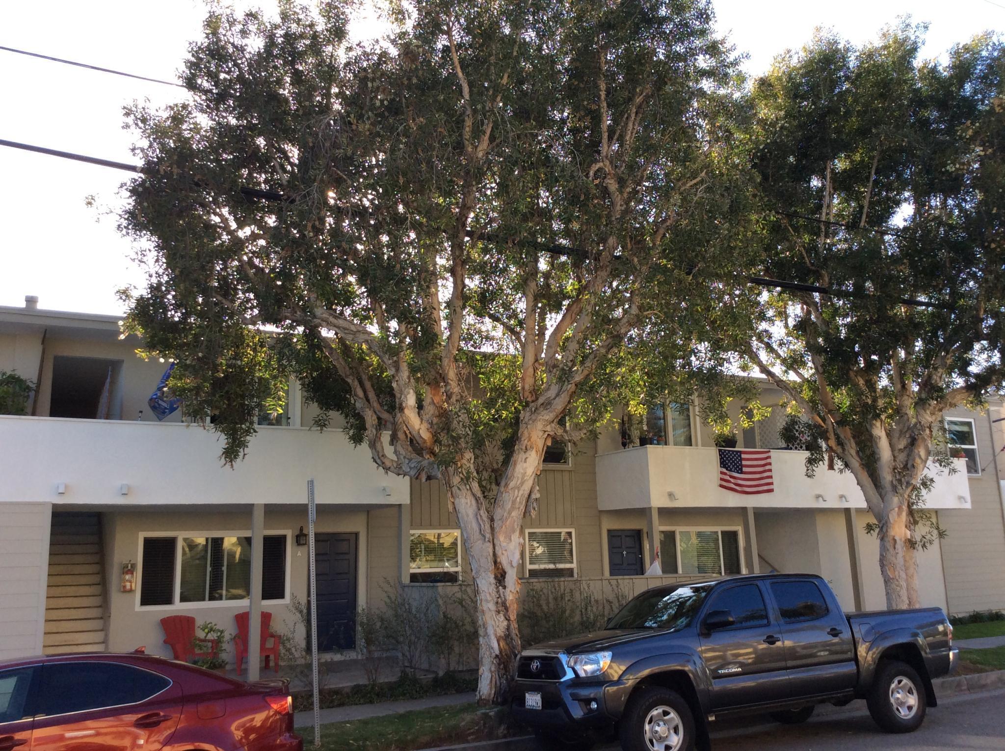 225 16th St For Rent - Huntington Beach, CA | Trulia