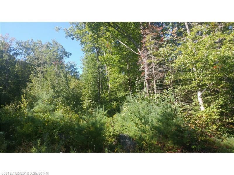 Map 235 Lot 9 For Sale Acton Me Trulia