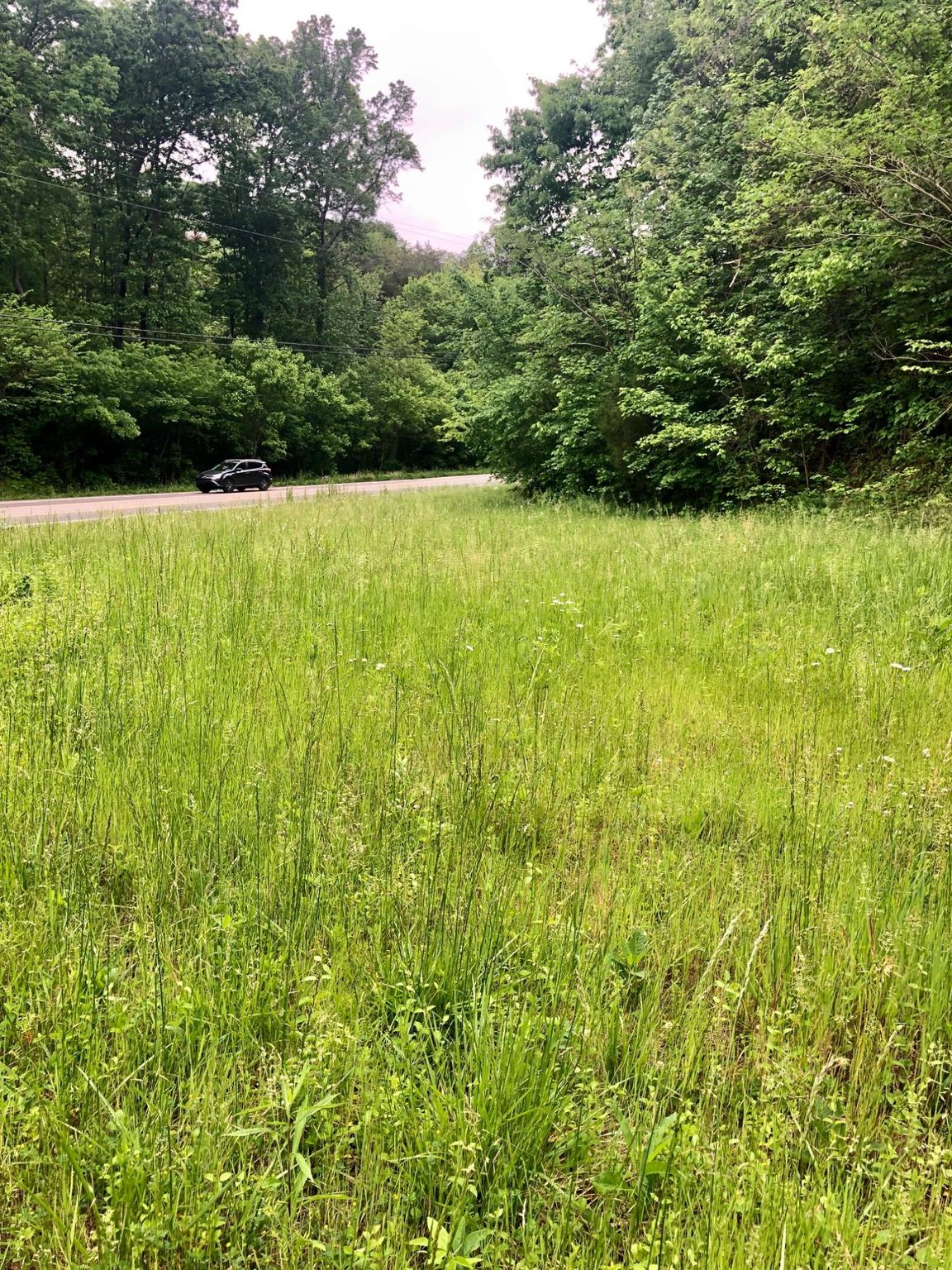 12419 Chapman Hwy, Seymour, TN 37865 - Lot/Land - MLS #1079412 - 7 Photos |  Trulia