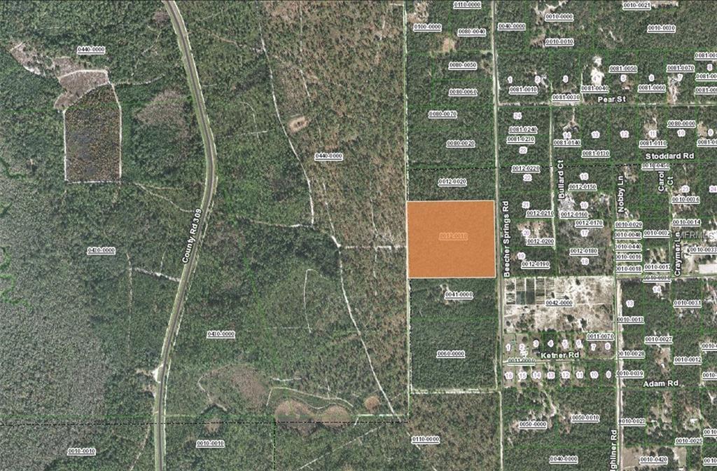 Beecher Springs Rd Welaka Fl 32193 Lot Land Mls V4904602