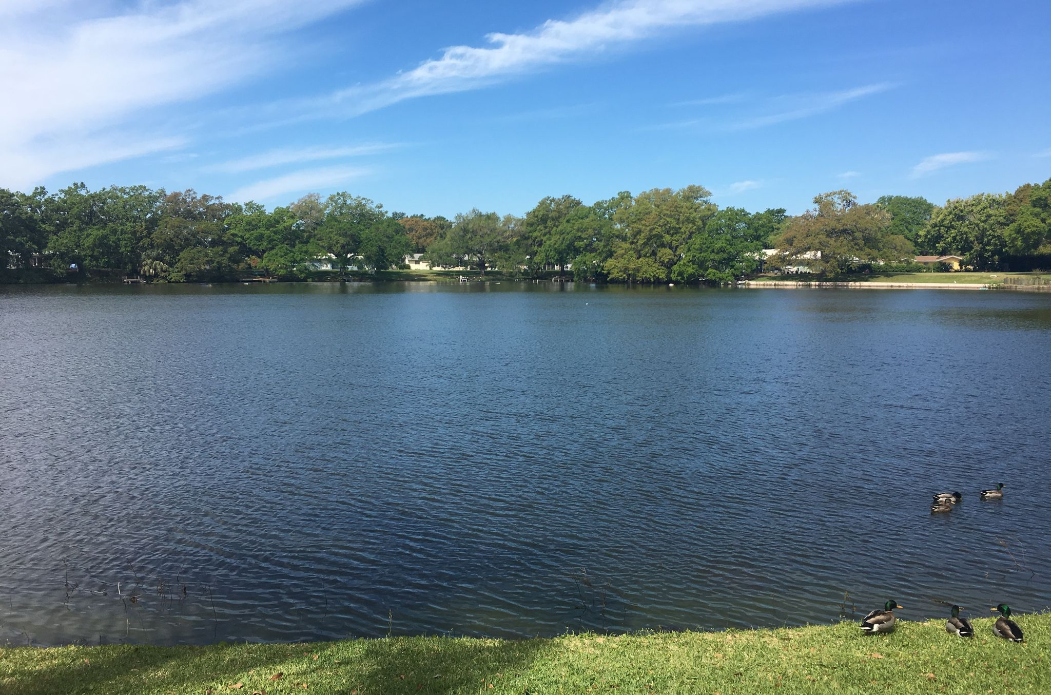 Clearview Florida Map.1920 Clearview Lake Dr Clearwater Fl 33755 2 Bath Single Family