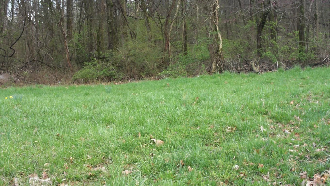 Chilhowee Dr #Lot 11 For Sale - Seymour, TN | Trulia
