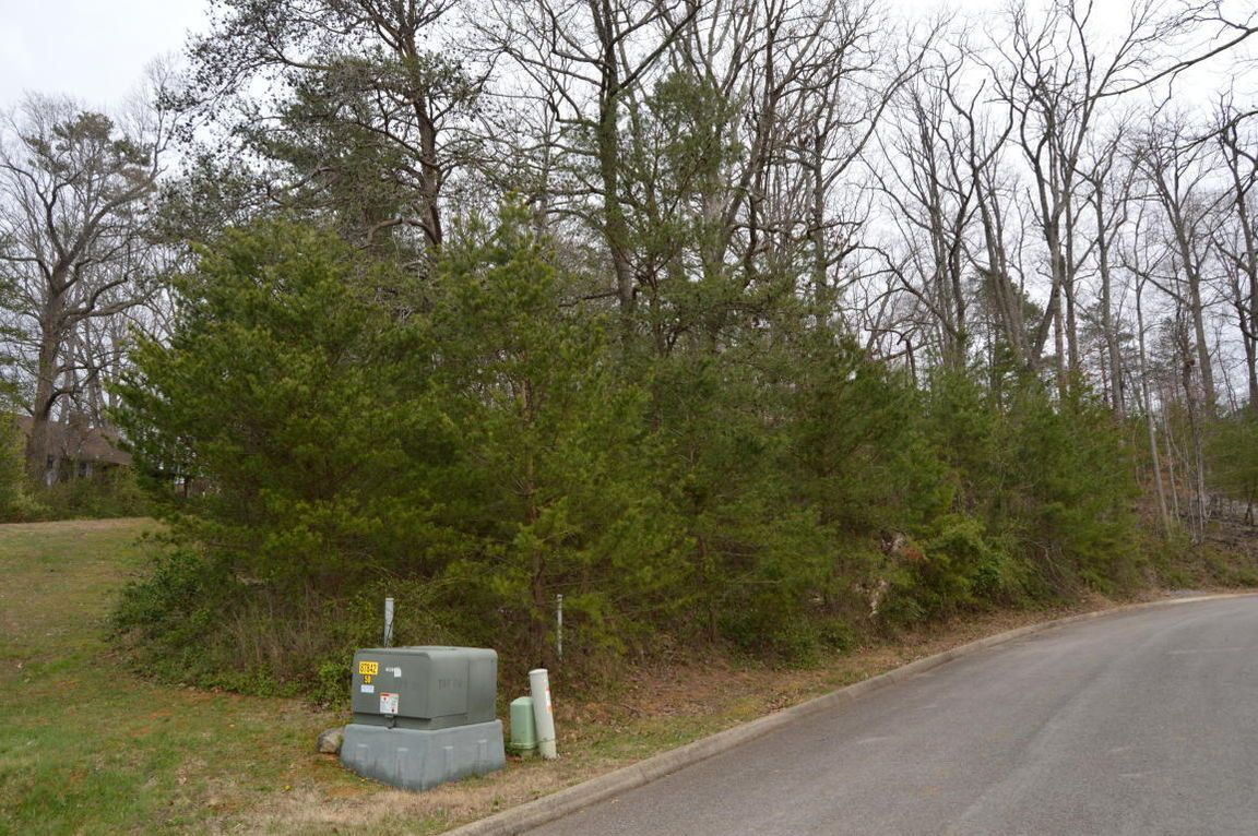 902 Trinity View Cir, Seymour, TN 37865 - Lot/Land - MLS #1036905 | Trulia