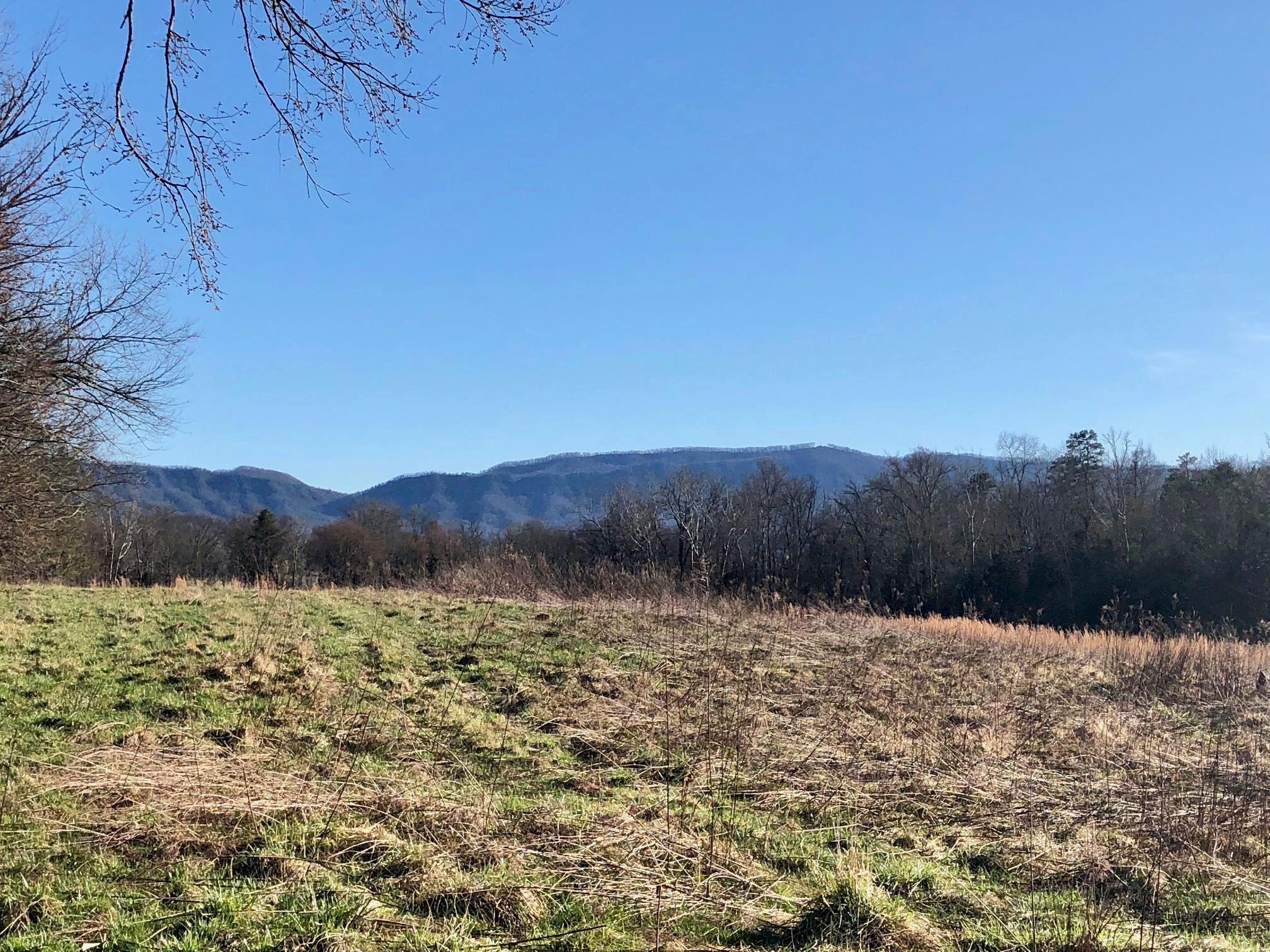 Wye Dr, Seymour, TN 37865 - Lot/Land - MLS #1069738 - 11 Photos | Trulia