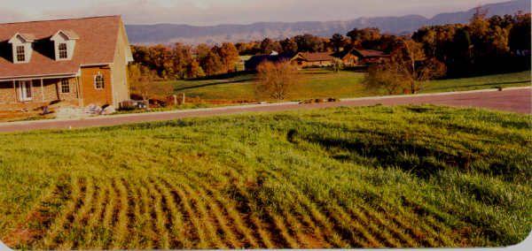 5709 Sawyers Green Trl, Seymour, TN 37865 - Lot/Land - 5 Photos | Trulia