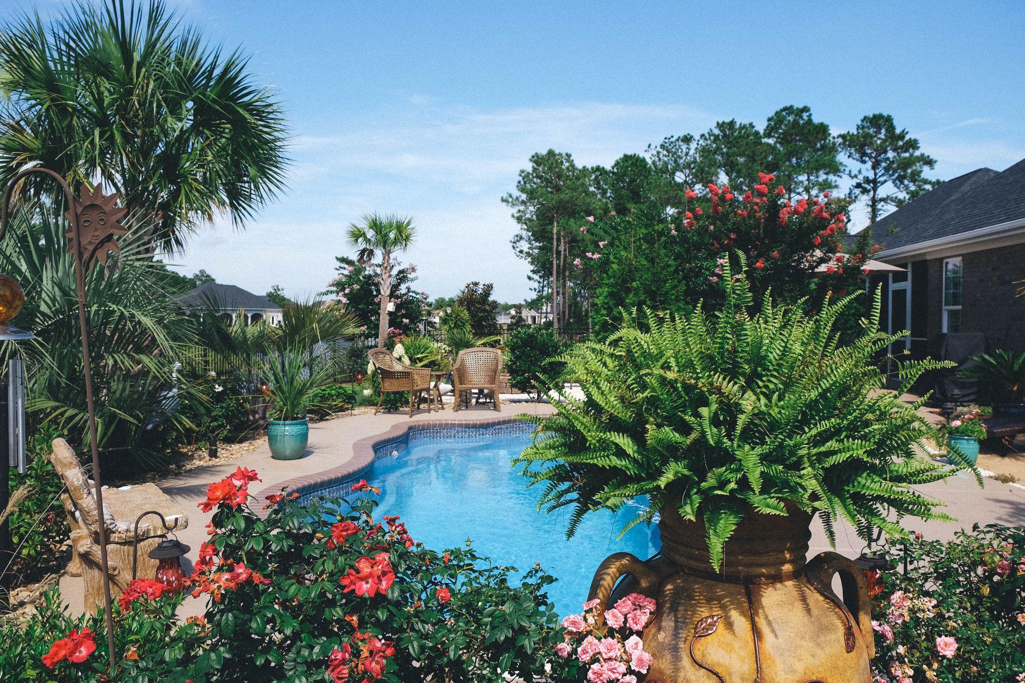 Amazing Palm Trees Garden Center Of Sc Inc Myrtle Beach Designs