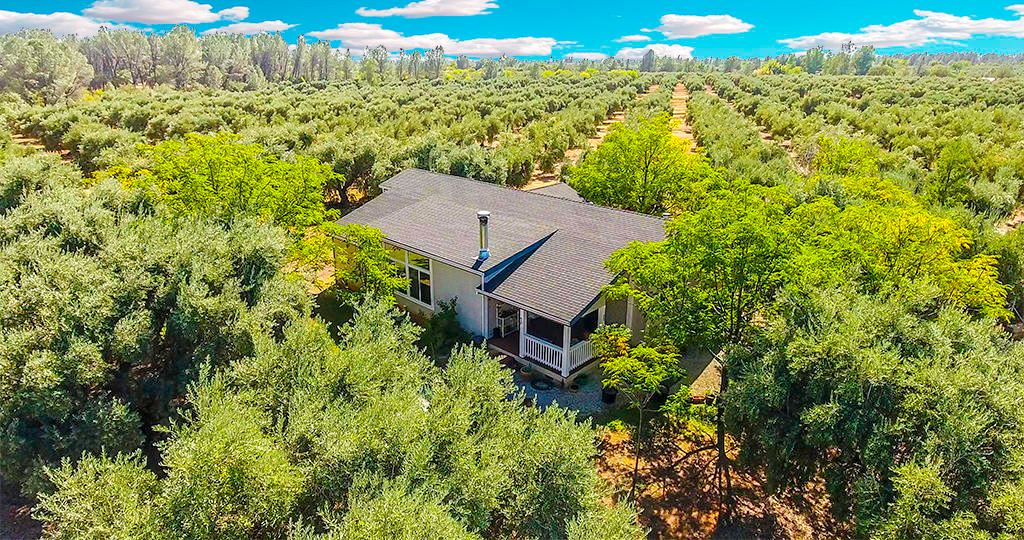 5691 Olive St, Anderson, CA 96007 - Estimate and Home Details   Trulia