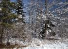 LOT 1 1 Northwood, Mequon, WI 53097, $174,900