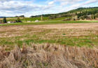 40197 SW Nelson Dr, Gaston, OR 97119, $275,000