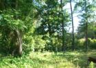 XX Reaves Dr, Midway, FL 32343, $12,667