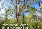 Lot 33 Mesquite Trl, Elgin, TX 78621, $49,900