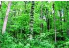 432 Peekskill Hollow Rd, Putnam Valley, NY 10579, $60,000