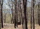 Plum Tree Rd, Salina, OK 74365, $26,000