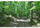 Mountain Top Rd, Chittenden, VT 05737, $595,000