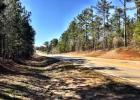 Hwy 42 Richardson Mill Rd, Roberta, GA 31078, $62,375