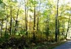 LOT 34 Point O Pines Road, Manitowish Waters, WI 54545, $29,900
