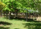 271 Tool Time Ln, Salem, AR 72576, $93,000 3 beds, 2 baths