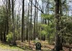 80 Sheep Mdw, Hot Springs, VA 24445, $119,000