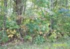 Lot 14 Pollard Cemetery Rd, Walling, TN 38587, $29,000