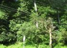 State Route 72, Jonestown, PA 17038, $450,000