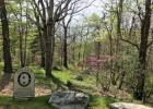 6 Sheep Mdw, Hot Springs, VA 24445, $65,000