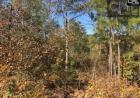 McCords Ferry Rd, Eastover, SC 29044, $50,000